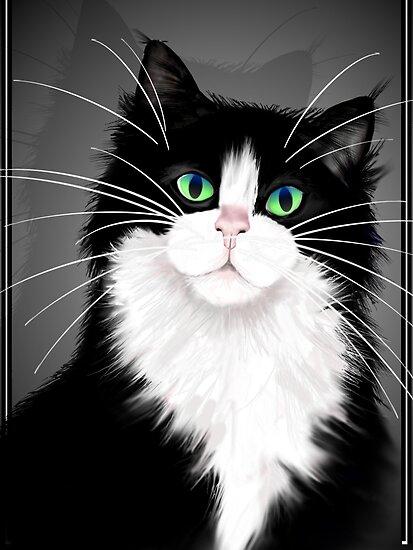 TUX-Tuxedo cats rock by Lotacats