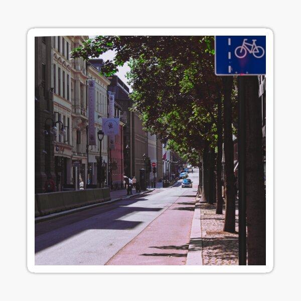 Calm street in Oslo, summer Sticker
