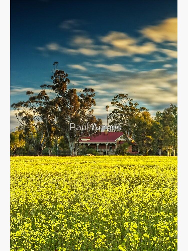 Hillside Farmhouse by AmyesPhotograph