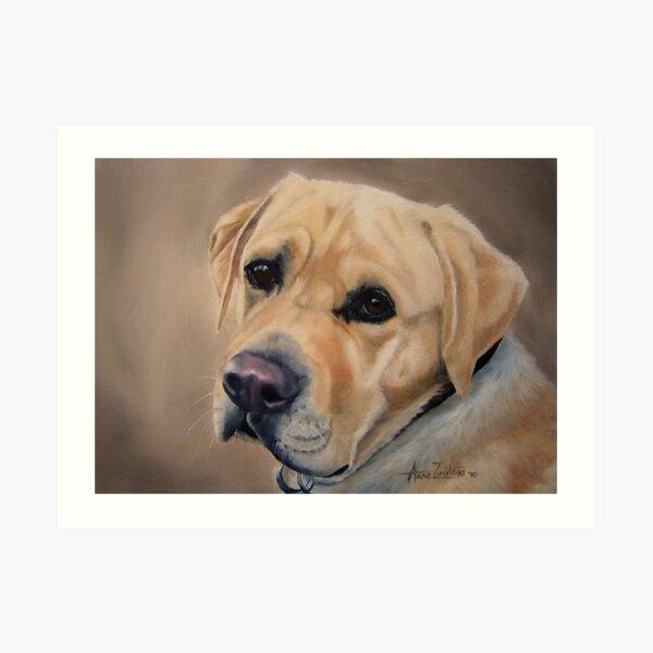 Labrador Expression Art Print