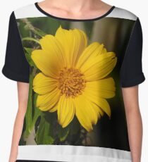 Narrowleaf Sunflower Chiffon Top