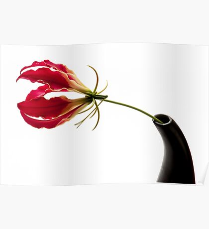 Gloriosa Lily Poster