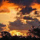 Warrandyte Sunset II by Adam Le Good