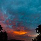Warrandyte Sunset IV by Adam Le Good