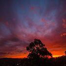 Warrandyte Sunset VI by Adam Le Good