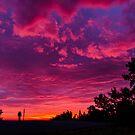 Warrandyte Sunset VII by Adam Le Good