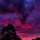 Warrandyte Sunset VIII by Adam Le Good