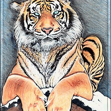 Majestic Tiger by Robykat