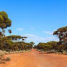 Red Road, Goldfields WA Australia   by IsithombePhoto
