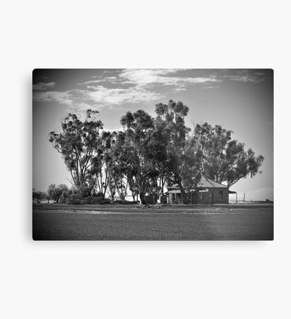 An Old Country Lady Metal Print
