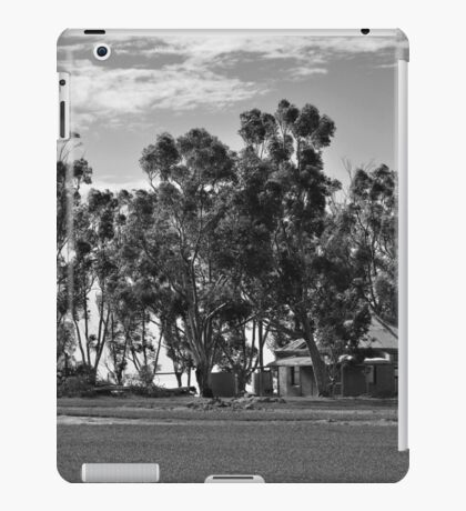 An Old Country Lady iPad Case/Skin