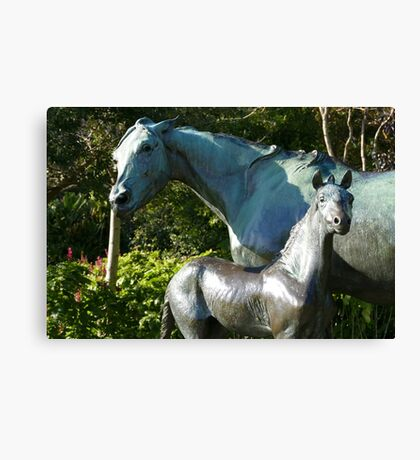 Mum and foal Canvas Print
