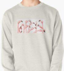 Penpals: Pink Pullover Sweatshirt