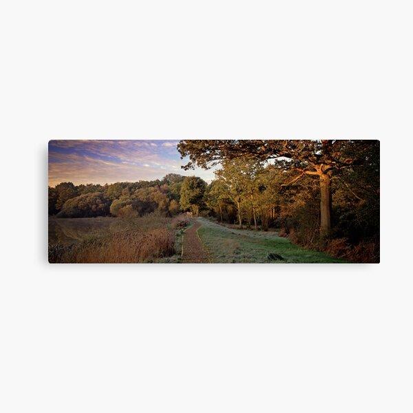 Epsom Common Canvas Print