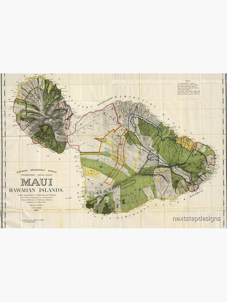 Hawaiian Islands Map, Island Maui, 1903 by John Donn by nextstepdesigns