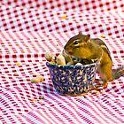 Chipmunk Picnic by Valerie  Fuqua