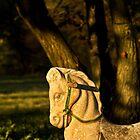 Chestnut Horse by Valerie  Fuqua