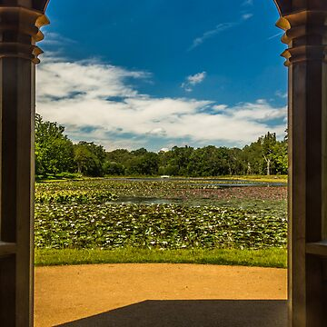 Framed lake of water lilies by LacoHubaty