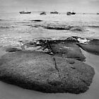 Bicheno Boats by Andrew Smyth