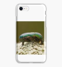 Rose Chafer Beetle iPhone Case/Skin