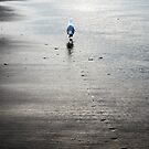 Follow Me To The Sun by AnneDB