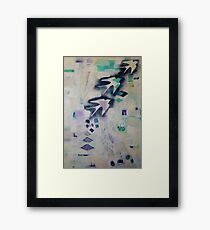 One swallow does not make a summer Framed Print