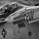Jet Bomber by Joe Saladino