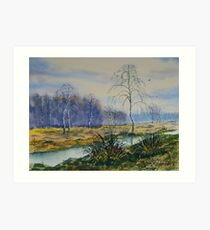 Stream in Flood on Strensall Common Art Print