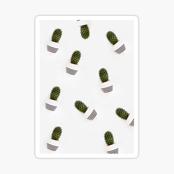 Cactaceae Pattern Sticker