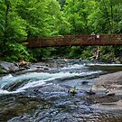Fires Creek North Carolina by Joe Saladino