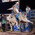 Bull Rider by Joe Saladino