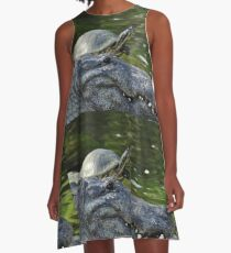 Alligator and Turtle, As Is A-Line Dress