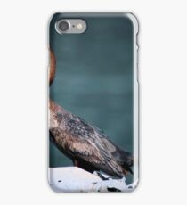 Port Renfrew Diver iPhone Case/Skin