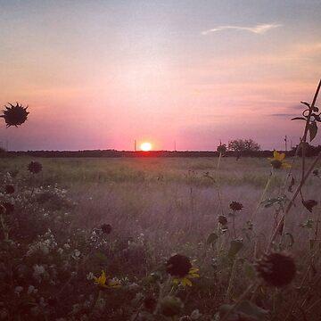 Sunset  by NonoZitro76