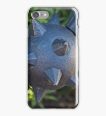 Touching the Wild iPhone Case/Skin