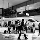 9:36 Shinkansen for Hayabusa - Tokyo, Japan by Norman Repacholi