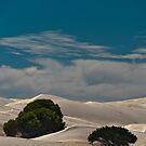 Dunes One by Werner Padarin