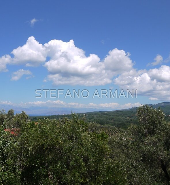 Untitled by STEFANO ARMANI