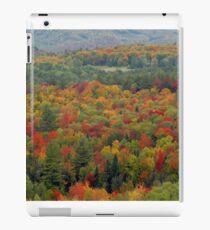 Fall landscape iPad Case/Skin