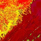 Volga River Delta Russia False Color Satellite Image by Jim Plaxco