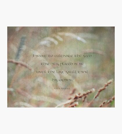 cultivate seed-inspirational Photographic Print