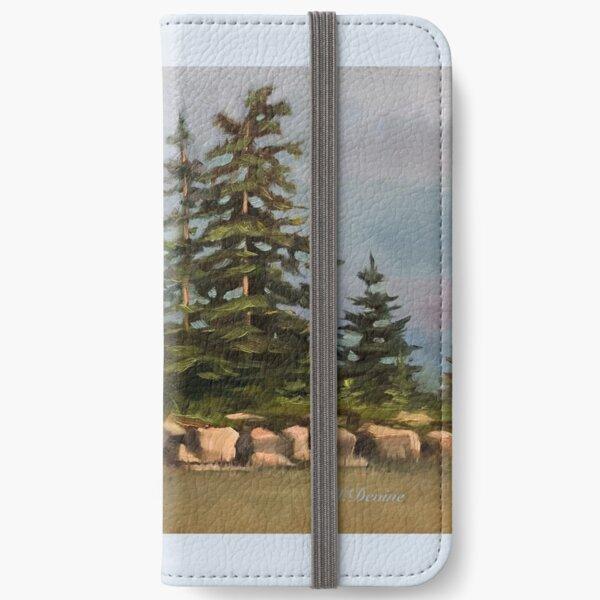 Northern Sky iPhone Wallet