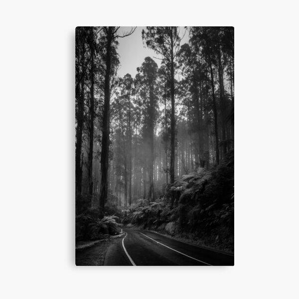 Black Spur 2 Canvas Print