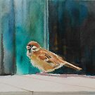 The little sparrow watercolor id1330050 by Almondtree