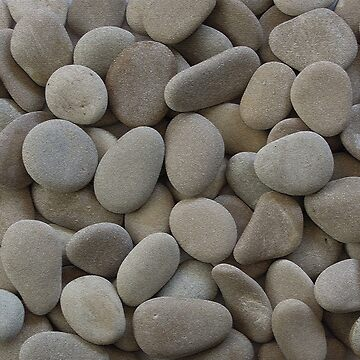 Pebbles! Pebbles! by annieonlee