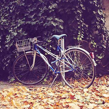 Blue bike  by claudiaraujo