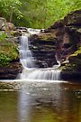Gentle Summer Flow Over Murray Reynolds Falls by Gene Walls
