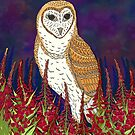 Fireweed and Barn Owl by lottibrown