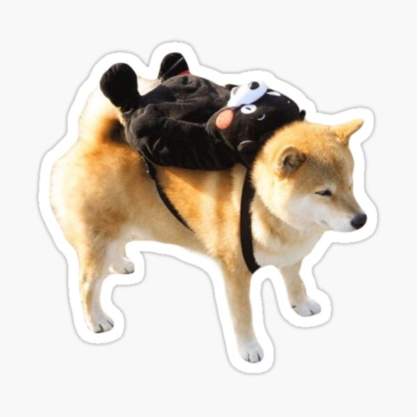 Ready for School Shiba Sticker