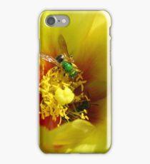 Aughochlora Sweat Bee iPhone Case/Skin